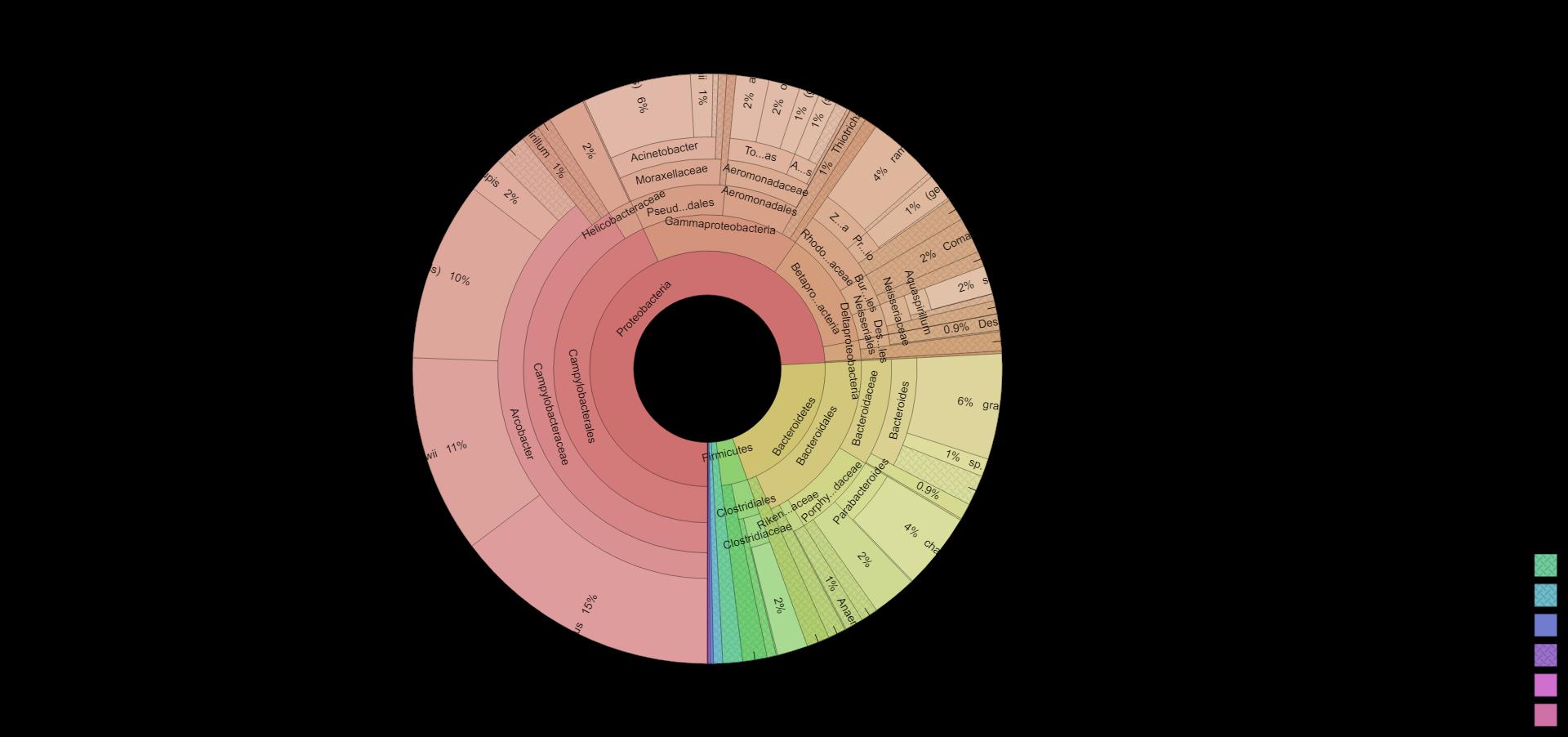 DNA Krona plot